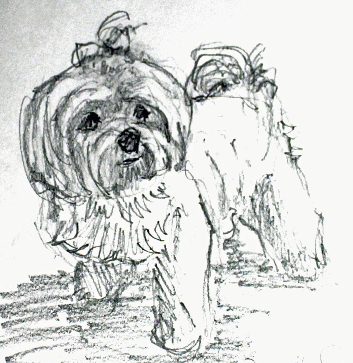 Sketch of Dakota