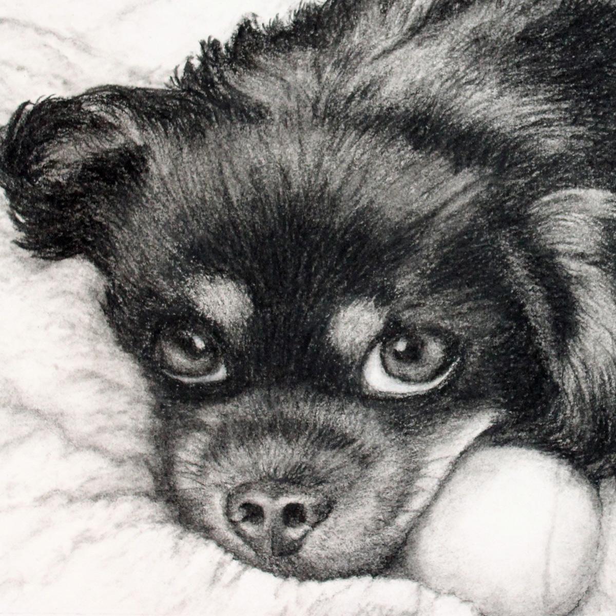 Charcoal Drawing of Tia